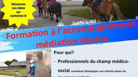 Formation à l'accompagnement médiation équine – Avec Sonia Boros, Equithérapeute adhérente du réseau Humacitia